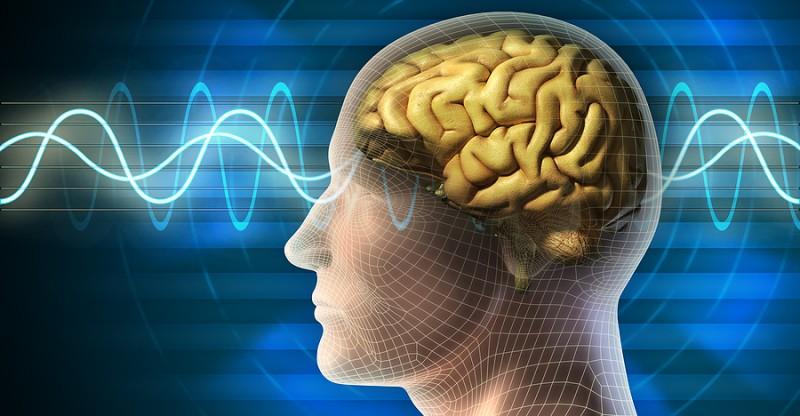 Brain_Waves_10453853_1