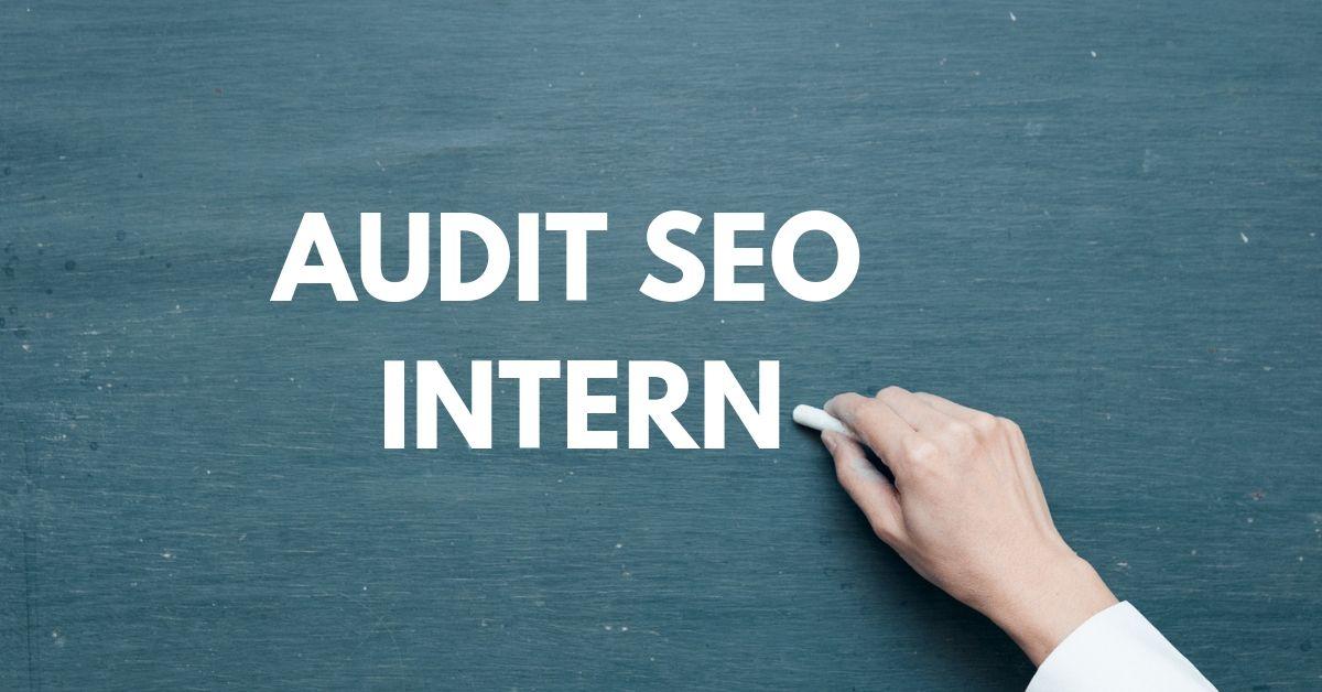 Optimizare SEO: Audit SEO Intern